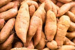 Orange sweet potatoes 2018